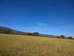 Fazenda plana de 255 hectares em Buritis MG