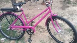 Poti rosa aro26