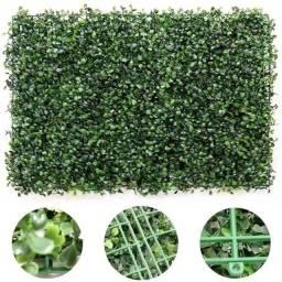 Placa de grama Buchinho Muro Inglês
