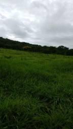 Fazenda Felixlandia Mg