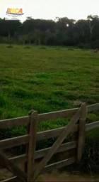 Chácara com 12 Hectares na Zona Rural - Triunfo/RO