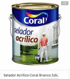 Vendo selador + Kit pintura