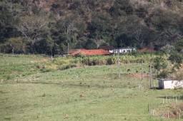 Fazenda - Rochedo de Minas - MG - 121 hectares