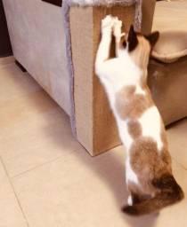 Protetor de sofás/Arranhador para gatos - Entregamos para você
