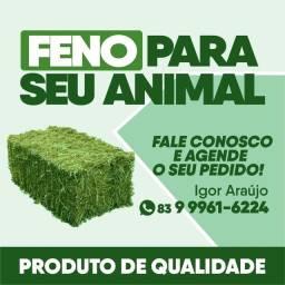 FENO EXCELENTE!!