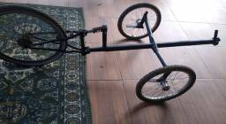 Trike projeto