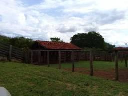 Fazenda 1321 hectares município Ituitaba