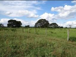 Fazenda na região de Marilia SP