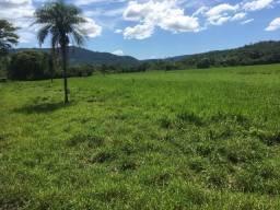 Fazenda 327 hac agrovila das palmeiras