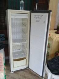 Freezer vertical 110wts