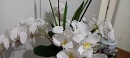 Lindo vaso decorativo completo com as orquídeas