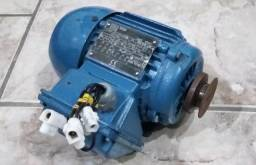 Motor Elétrico WEG Trifásico 1/4 CV