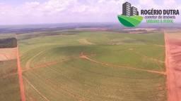 Fazenda 400 Alqueires 80 km de Londrina