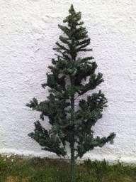 Árvore natal 1.90 altura