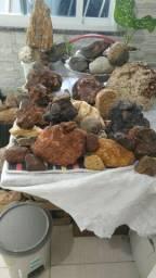 Ótimas para estudo coleção ou decoração vendo barato