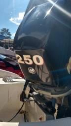 Motor polpa Mercury 250