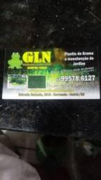 Gramas em leiva 8 reais metro zap *