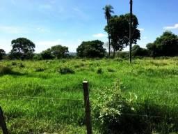 90 hectares plana - Bruta