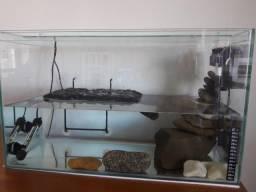 Aquaterrário para Tartarugas - Aquário