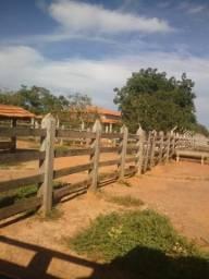 Vendo Fazenda próxima Pirapora