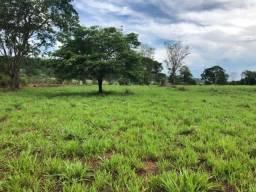 Chácaras Região de Goianira 30 km de Goiânia