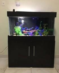 Aquario completo 160l