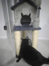 Arranhador para gato(Seminovo)
