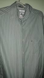 Camisa Social Lacoste  v/t