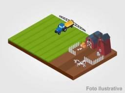 EF) JB16876 - Terreno rural com 8.68.96há na cidade de Tarumirim em LEILÃO
