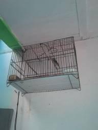 gaiola de ferro
