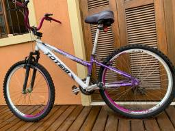 Bicicleta Adulto Totem