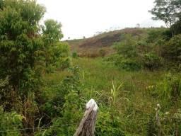 4 hectares em flexeiras