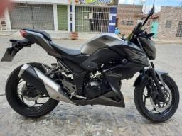 Z 300 2016