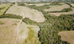 64 hectares
