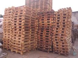 Paletes de madeira e plastico