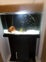 Aquario 120l completo