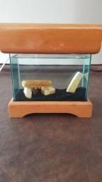 Aquário Beteira 3 Litros com móvel e Luz