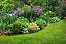 Manutenção e reformas de jardins