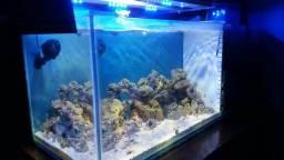 Vendo ou troco aquário Marinho