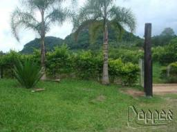 Chácara à venda com 2 dormitórios em Paquete, Capela de santana cod:3621