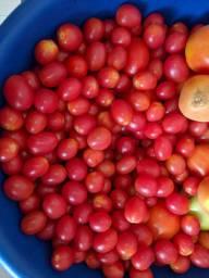 Tomate cereja orgânico