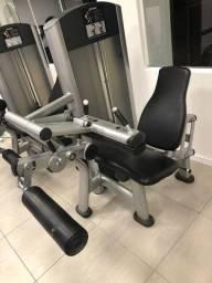 Flexora de Joelhos Life Fitness.