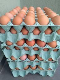 Venda de Ovos Caipiras