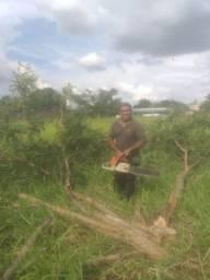 corta  árvores qui estejam  atrapalhado vcs