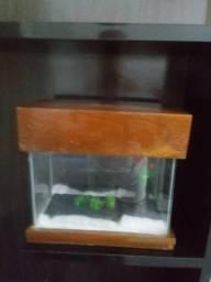 Vende-se um aquário com luz OBS: Não acompanja bomba