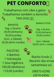 Banho+tosa