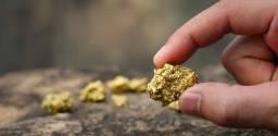 Vendemos ouro