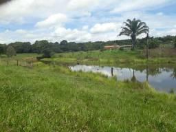 Venda fazenda de 49.5 Alqueires em Cidelândia-Ma