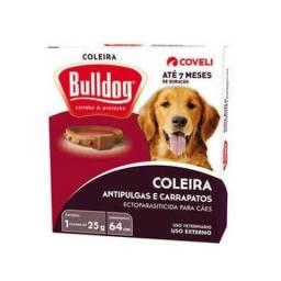 Coleira bulldog