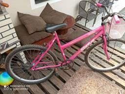 Vendo bicicleta adulta